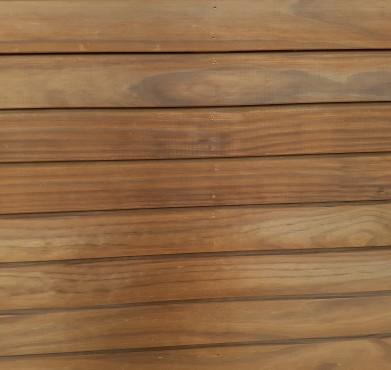 radiata-pine-thermo